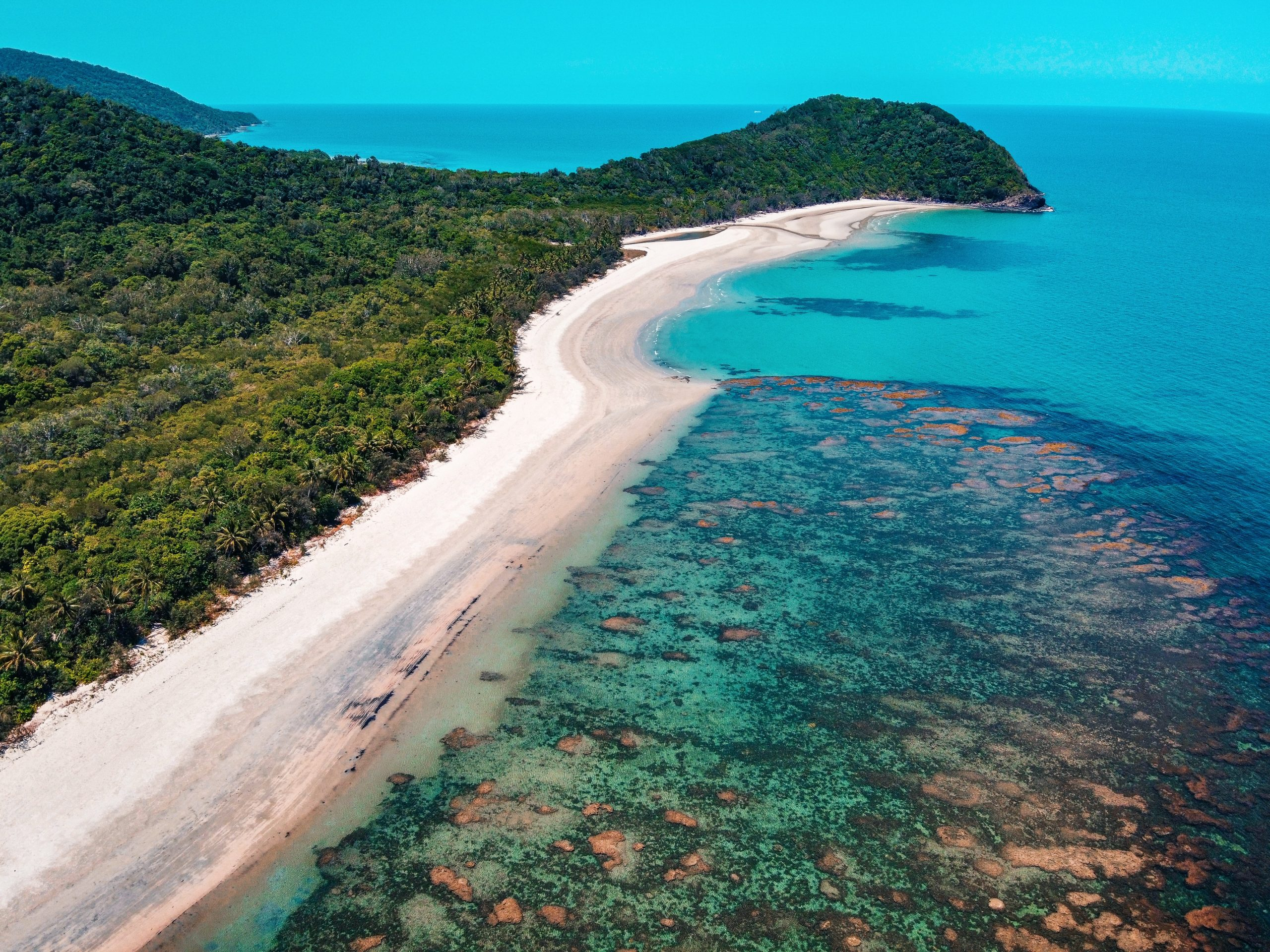 places-to-visit-in-Queensland-daintree-rainforest.