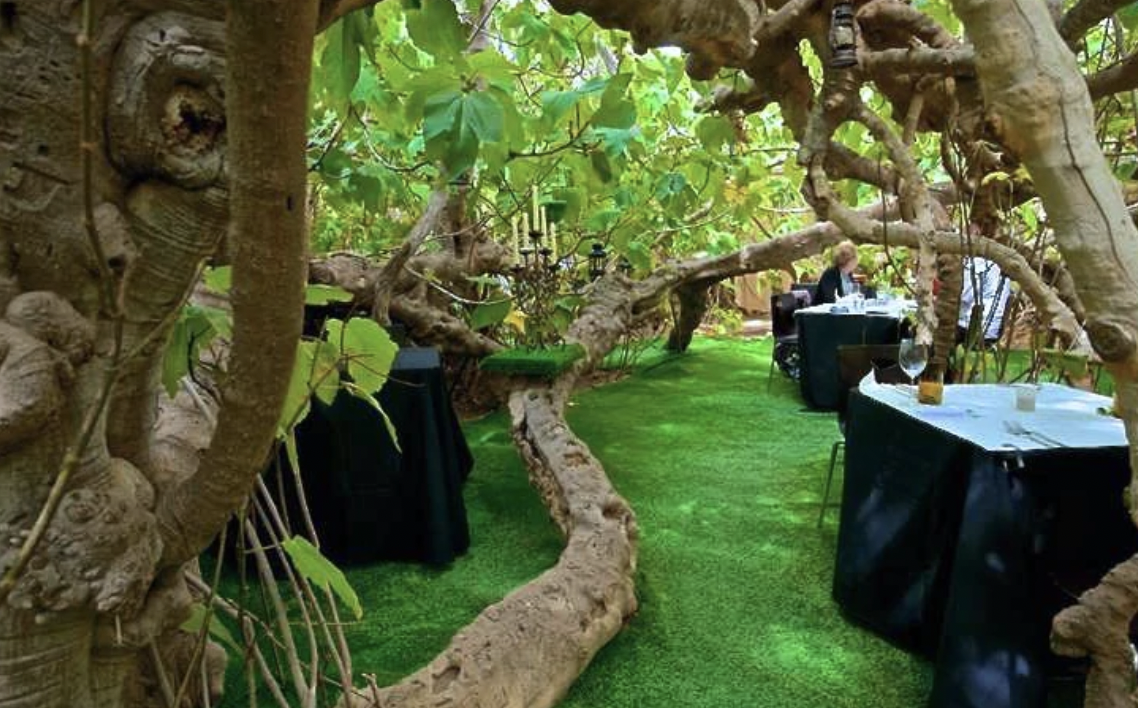 date-ideas-in-adelaide-the-fig-tree-restaurant