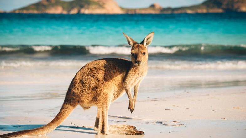 australian-lifestyle