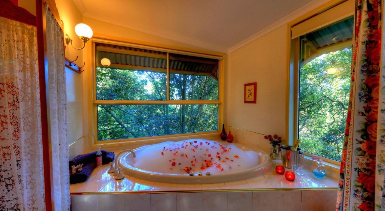 best-place-stay-couples-sunshine-coast-hinterland